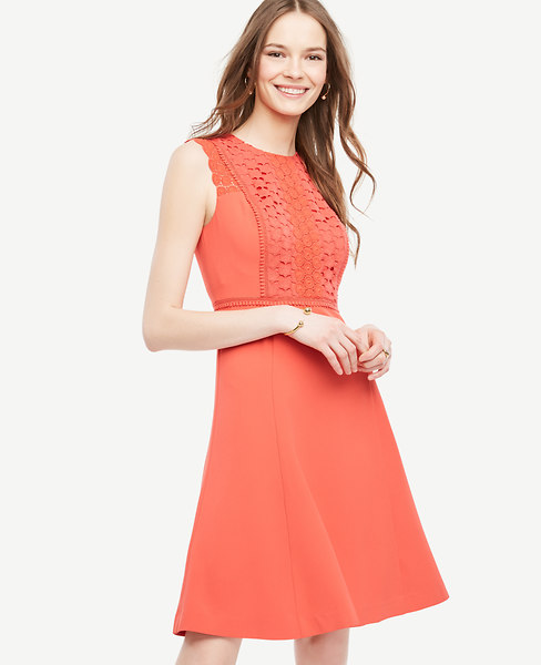 Ann Taylor Petite Lace Trim Flare Dress
