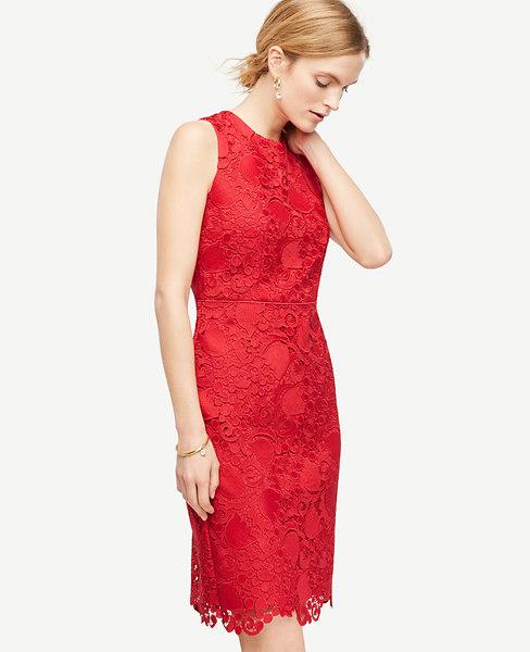 Ann Taylor Petite Spring Lace Sheath Dress