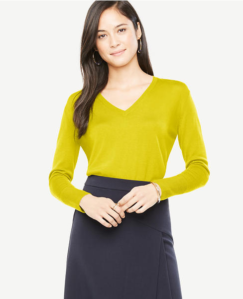 Petite Extrafine Merino Wool V-Neck Sweater