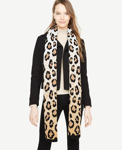 Ann Taylor Cheetah Blanket Scarf