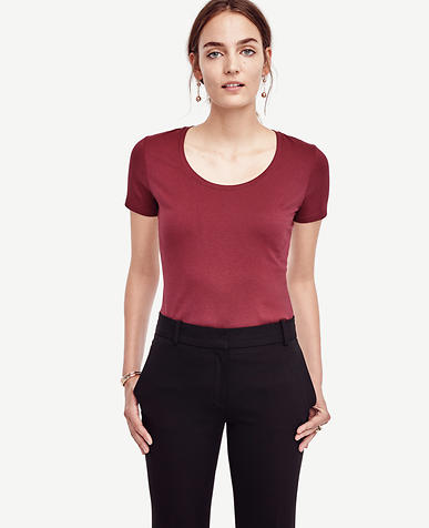 Image of Cotton Scoop Neck Tee