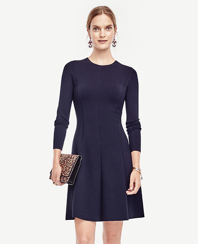 Image of Petite Flare Sweater Dress