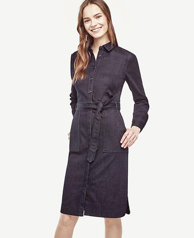 Image of Petite Denim Shirtdress