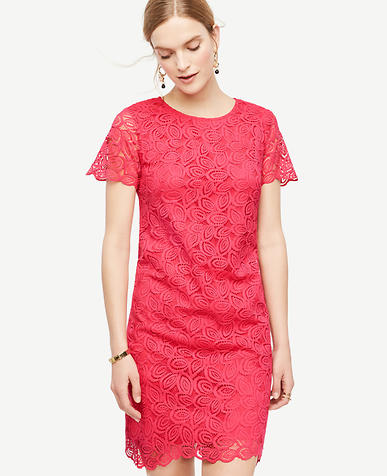 Image of Leaf Lace Shift Dress