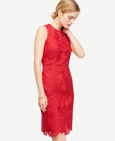 Image of Petite Spring Lace Sheath Dress