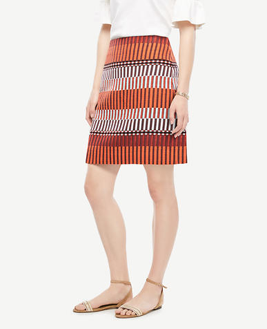 Image of Mixed Stripe Skirt
