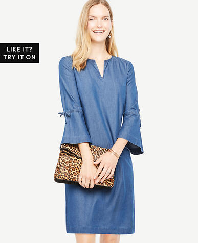 Chambray Bell Sleeve Dress