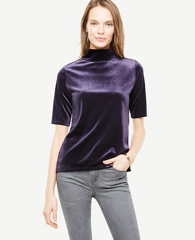 Elbow Sleeve Velvet Mockneck Top
