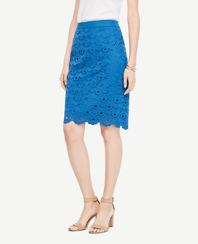 Petite Circle Lace Pencil Skirt