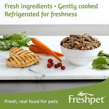 Bj S Fresh Dog Food