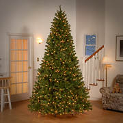 National Tree Company 9' Pre-Lit Artificial North Valley Spruce Christ