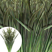Lily Grass Floral Filler, 3,000 Stems - Variegated