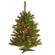 National Tree Company 3' Eastern Spruce Tree - Multicolored