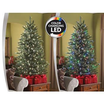 Sylvania 4.5' Color-Changing LED Tree - Sylvania 4.5' Color-Changing LED Tree - BJs WholeSale Club